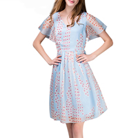 Chiffon One-piece Dress, different size for choice, printed, floral, light blue, Sold By PC